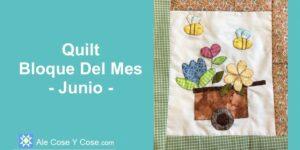 Quilt Bloque Mes - Junio