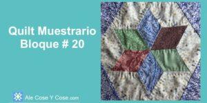 Quilt Muestrario Bloque 20
